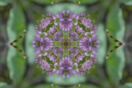 mingle: green and lilac decorative pattern Stock Photo