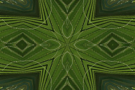 Geometrical green abstract decorative pattern photo