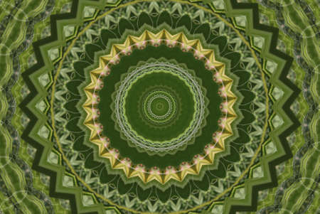 Geometrical green abstract decorative pattern Stock Photo - 4351400