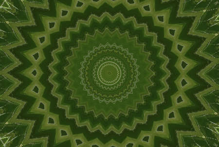 Geometrical green abstract decorative pattern Stock Photo - 4351166