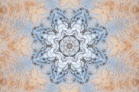 beige with blue decorative pattern photo