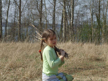 armful: little girl in the field with the armful of reed Stock Photo