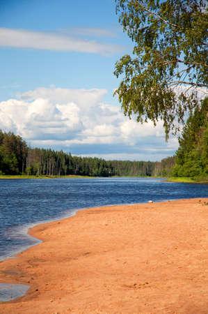 beautiful summer landscape ashore lake Stock Photo - 5137566
