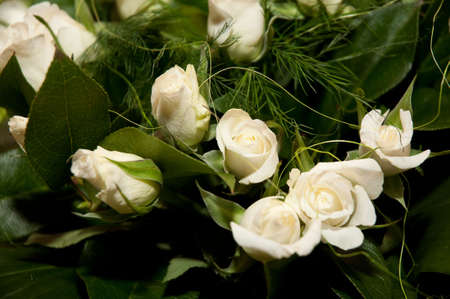 Beautiful bouquet of elegant pure white roses in soft light,with babys breath. Wedding flowers. photo
