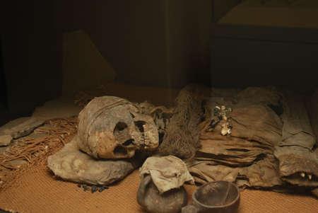 skeleton of man Stock Photo - 5722859