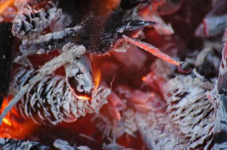 conflagrant: cones, conflagrant afire Stock Photo