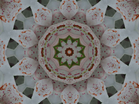 shone: Beautiful ornament from colours, a kaleidoscope
