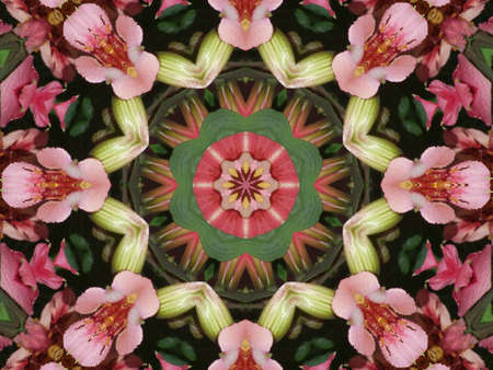 Beautiful ornament from colours, a kaleidoscope photo