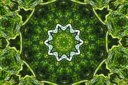 Geometrical green abstract decorative pattern Stock Photo - 6401948
