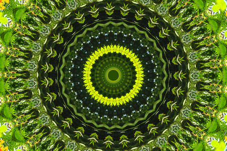 green abstract decorative pattern Stock Photo - 6401946