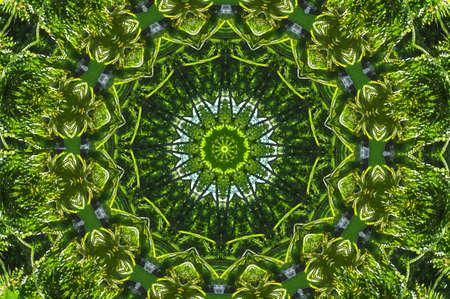 meditatiya: green abstract decorative pattern Stock Photo
