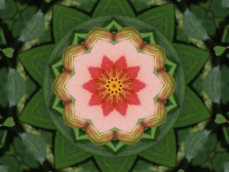Abstract kaleidoscope in christmas colors of red and green. Stock Photo - 6514610