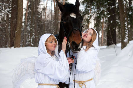 Two angels near to a horse photo