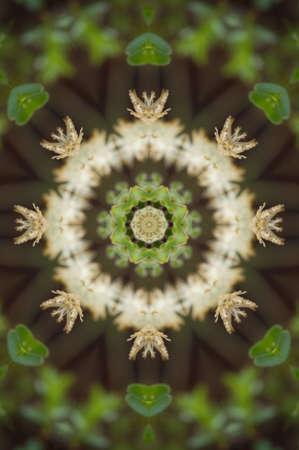 psikhodelika: Green kaleidoscope Stock Photo