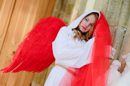 allurement: Beautiful young angel with red wings