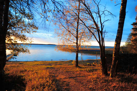 witchery: Decline in autumn wood about lake Stock Photo