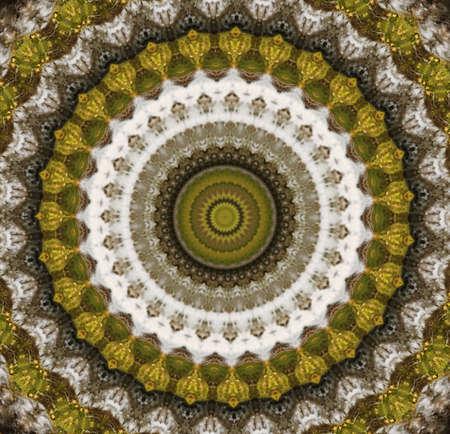 Kaleidoscopic  photo