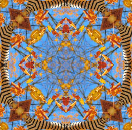 digitized: Beautiful bright kaleidoscope