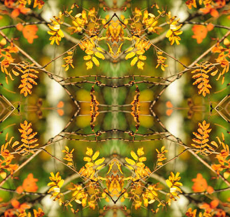 Kaleidoscope in pretty harvest colors of  yellow and green. Stock Photo - 8241111