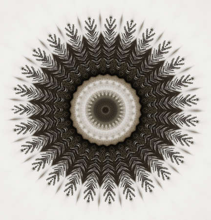 graphic circular ornament photo