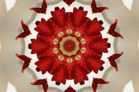 wholistic: Red Kaleidoscope