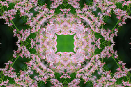 labyrinthine: lilac floral pattern on a green background
