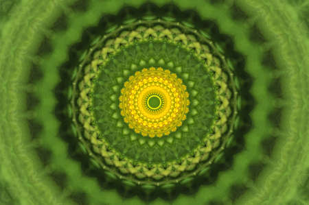 green ornamental kaleidoscope Stock Photo - 8701944