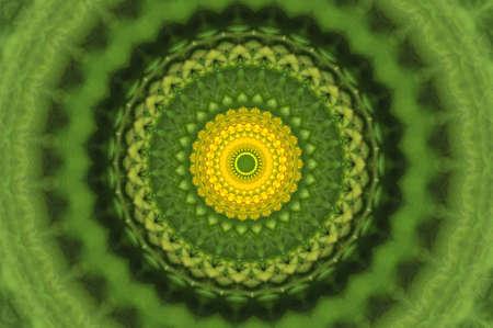 green ornamental kaleidoscope