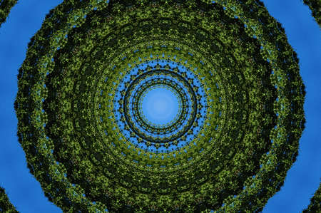 green ornamental kaleidoscope photo