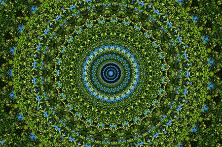 green ornamental kaleidoscope Stock Photo - 8701951