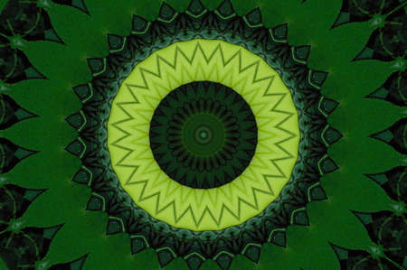 Green Kaleidoscope Stock Photo - 8699887