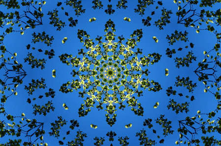 mohammedan: green flora ornament on a blue background Stock Photo
