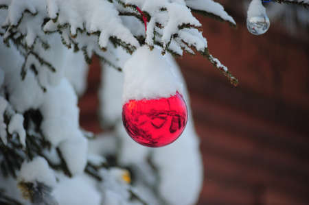 new year s santa claus: Christmas Ornament on Tree with Snow  Stock Photo