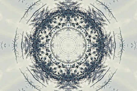 dualistic: black and white kaleidoscope
