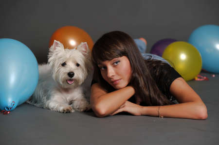 The young beautiful woman with a maltese photo