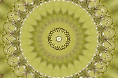 brown and green circular pattern photo