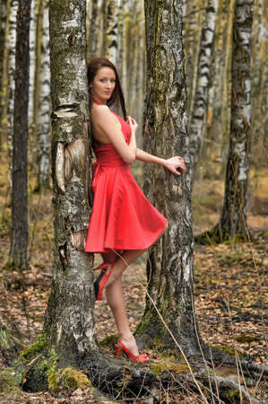 european white birch: girl in red dress in the park among the birches