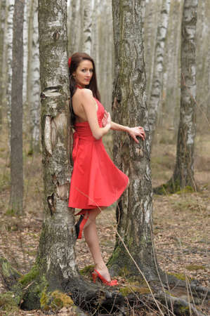 girl in red dress in the park among the birches photo