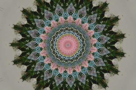 circular pattern of green tones ornament photo