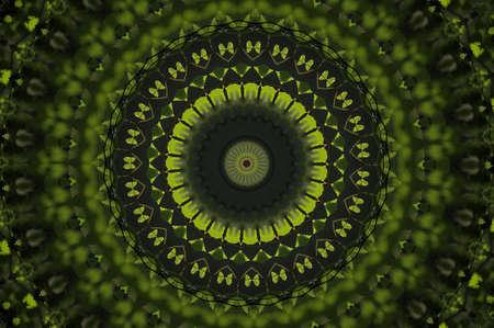 green floral design photo
