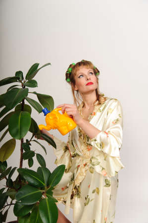 housewife shake the dust from the ficus photo
