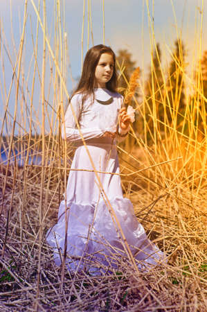 dry grass: girl in white dress among the high dry grass Stock Photo