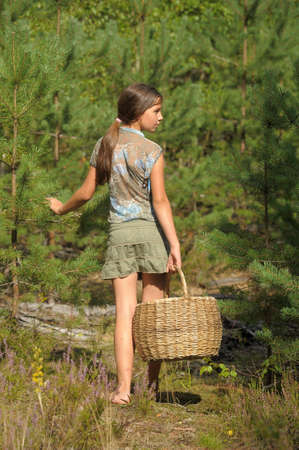 braids: The girl with a basket in wood