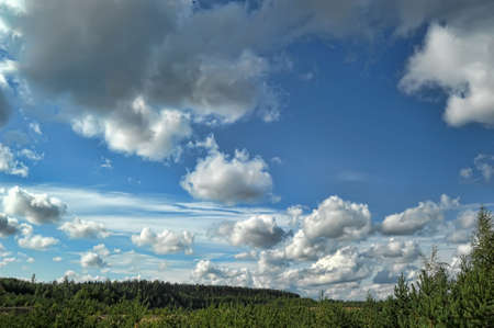clouds over the forest photo