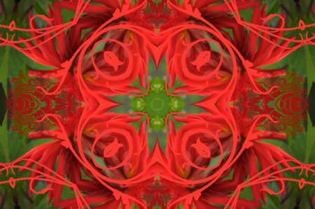 red and green ornament photo