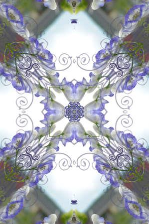 purple ornament photo