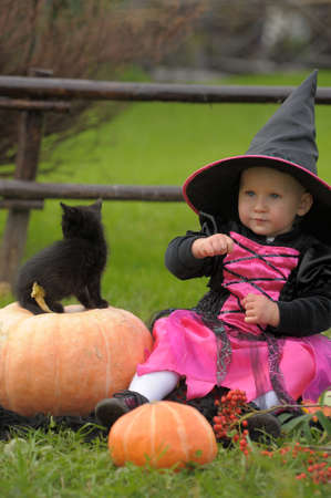 kitten small white: little witch with a black kitten