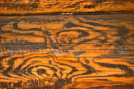 wooden surface background photo