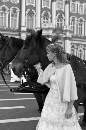 bride with horse photo