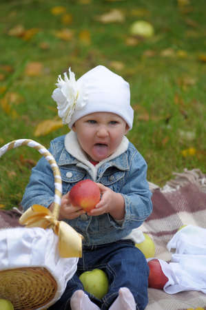 The little girl with a basket of apples Stock Photo - 11037134
